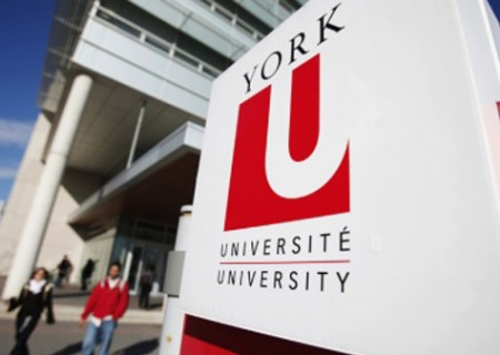 york-university-feature