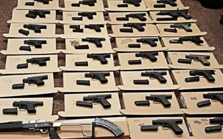 seized many guns